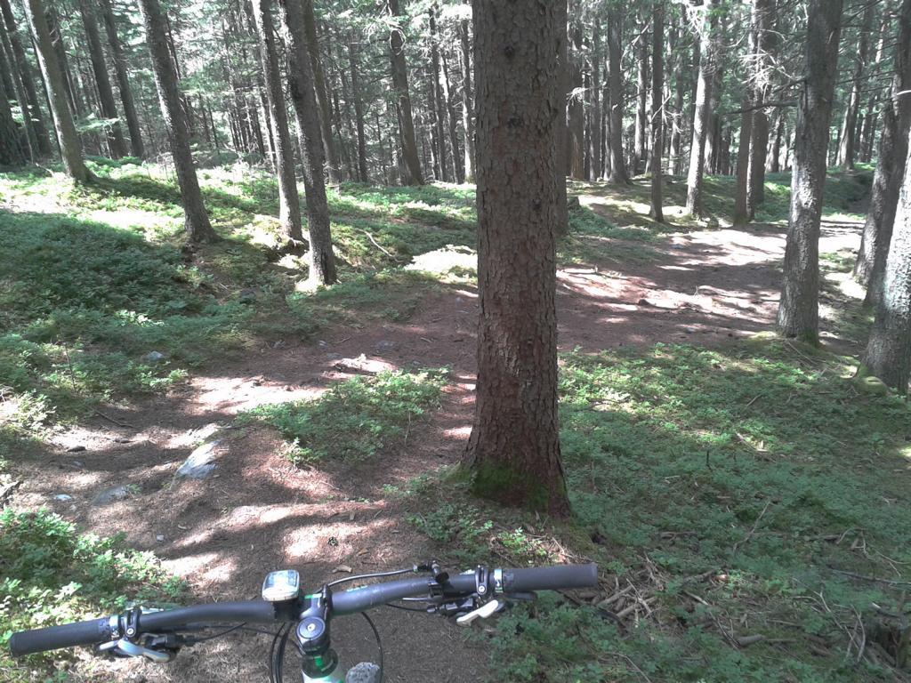 bikefex-eenduro-bigmountain-singletrail-innsbruck-padasterjoch-haus