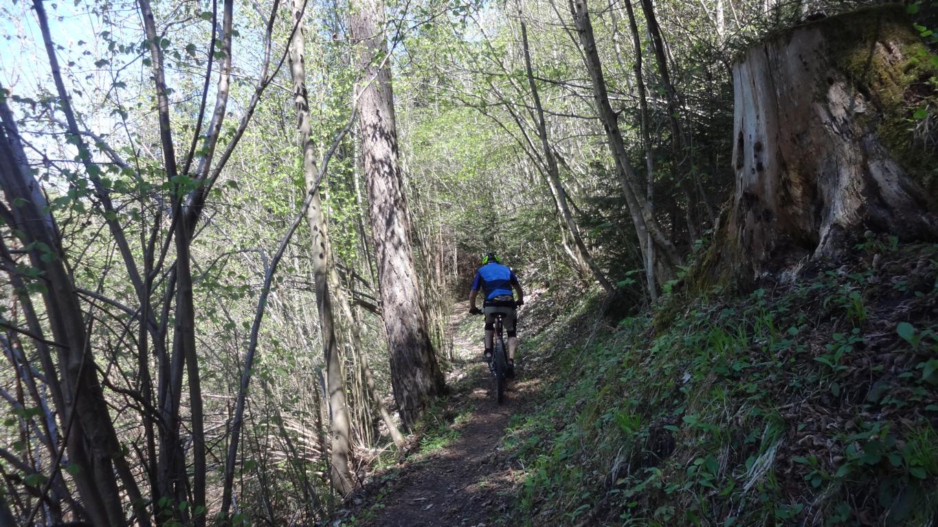 Mountainbike Nahetal - die besten Trails (Tour )