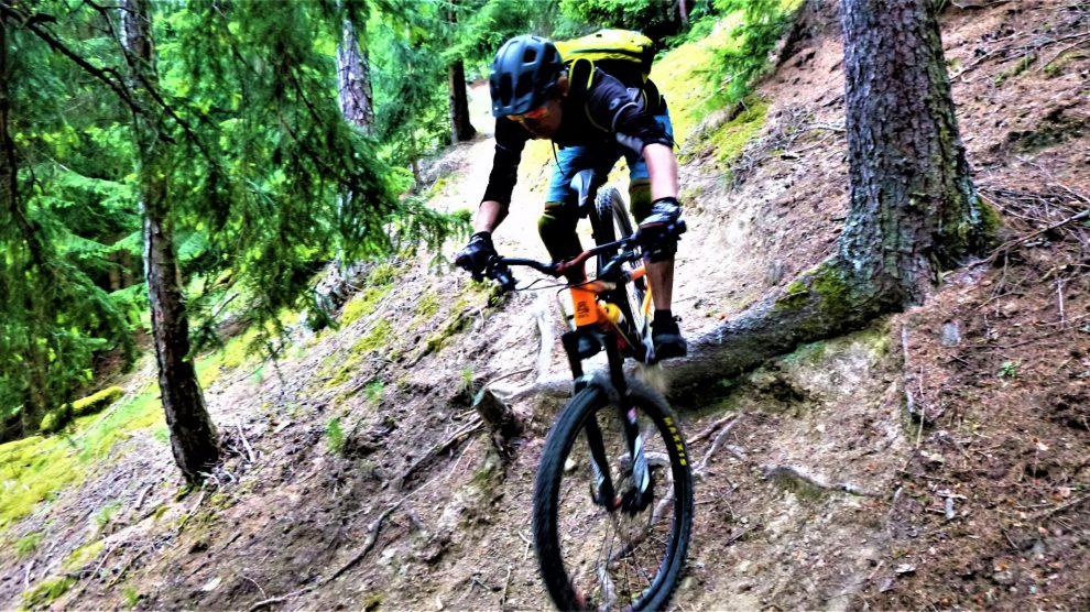 Nördersberg 17er-Trail S2